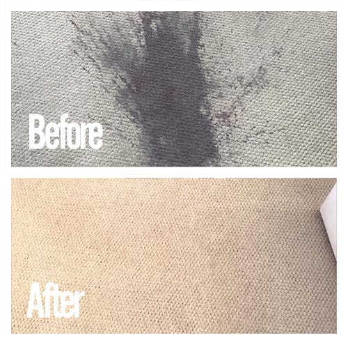 carpet cleaning job in camden