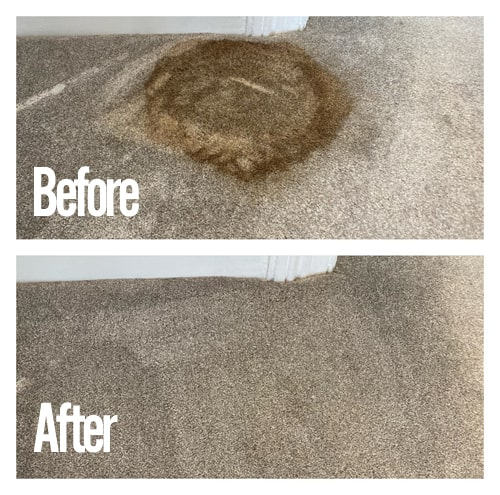 stain cleaning carpet before and after shots