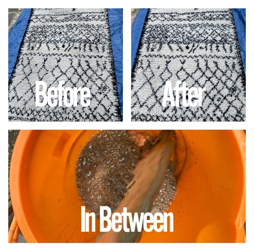 rug cleaning before and after shots
